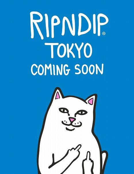 なぜか目を引くあの猫!ストリートブランド「RIPNDIP」日本初の旗艦店を原宿にオープン