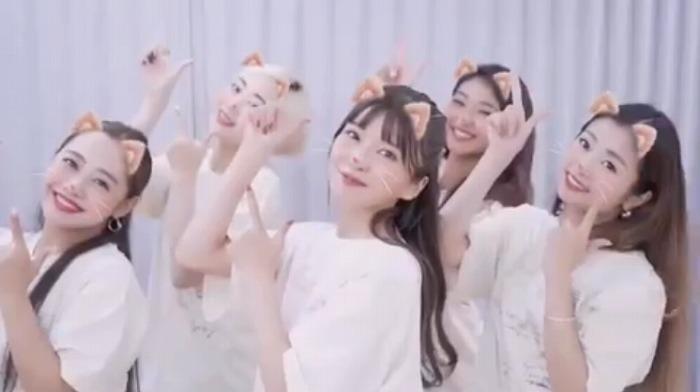 "AAA・宇野実彩子の""ネコダンス""動画が「国宝級に可愛い」と話題"