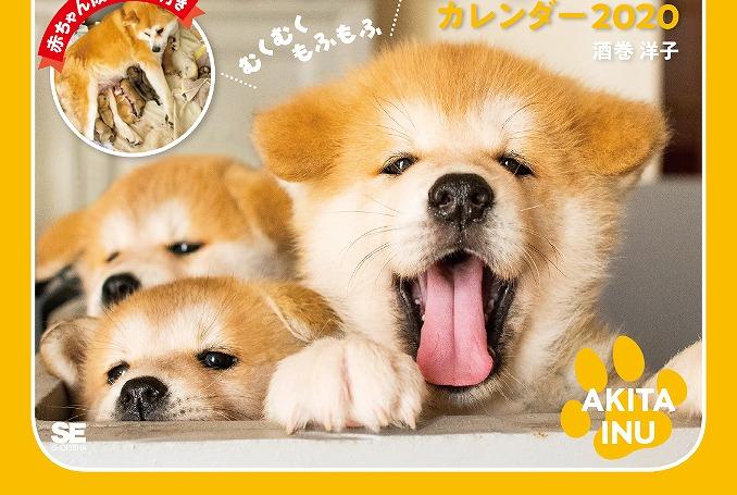 今話題の秋田犬も!もふもふ&キュートな動物がてんこ盛りのカレンダー発売