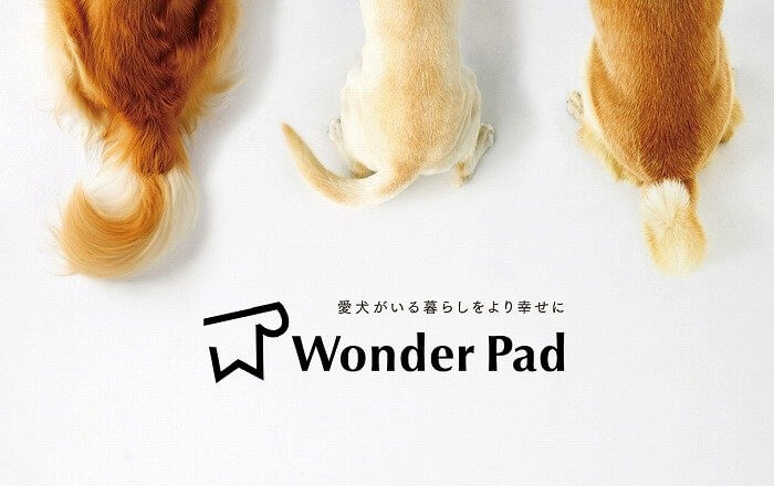 Wonder Pad_main